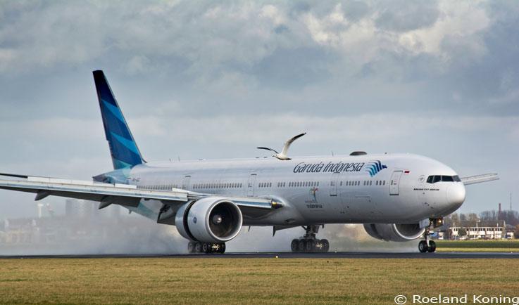 Vogels En Vliegtuigen Op Schiphol Vogelwacht
